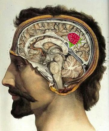 Man with skull.jpg